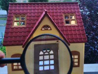 magnified house